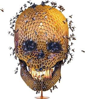 Save the bees - Rettet die Bienen, rettet die Erde!