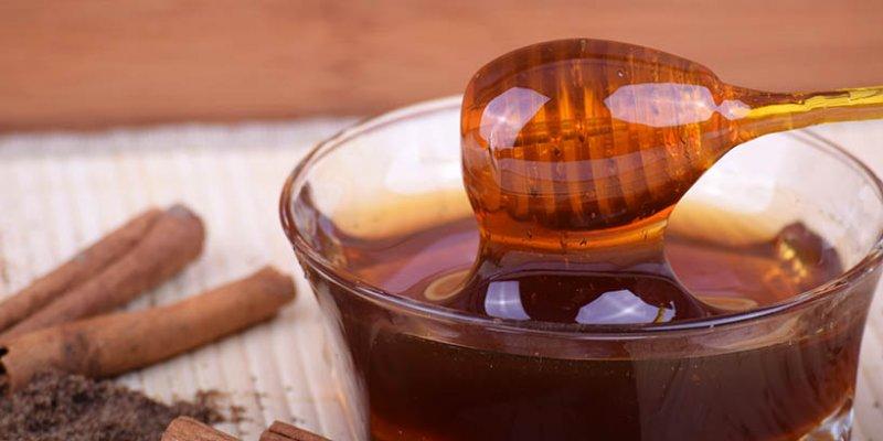 Honig - der goldene Saft der Götter