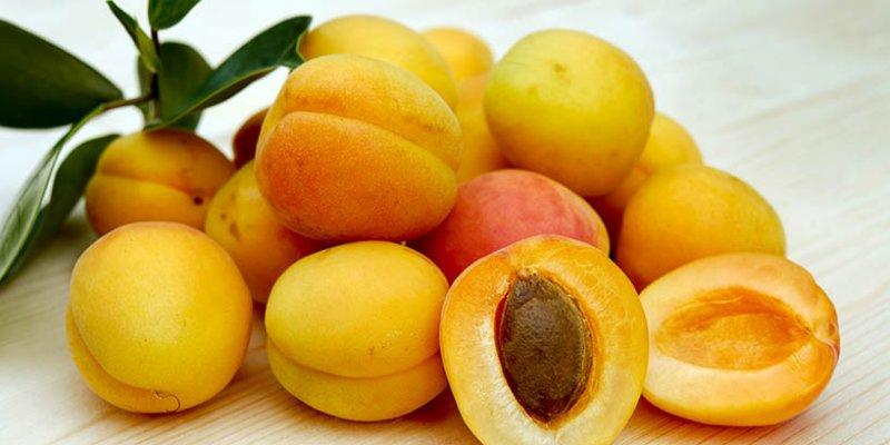 Met Aprikose - Honigwein mit Aprikosen