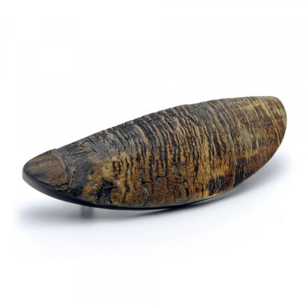 Haarspange - echtes Horn, oval, naturfarben - Normclip, 8 cm - Vorschau
